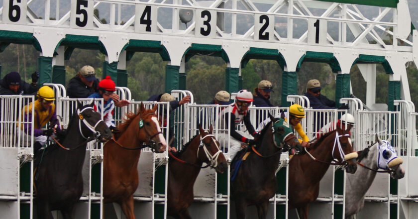 Betting Systems for Horse Racing